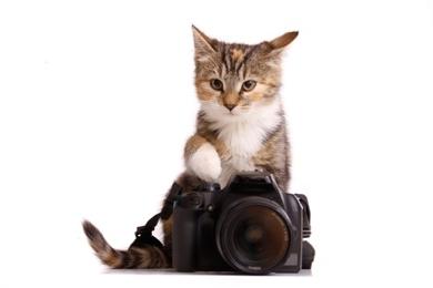 Digitalkamera guenstig kaufen
