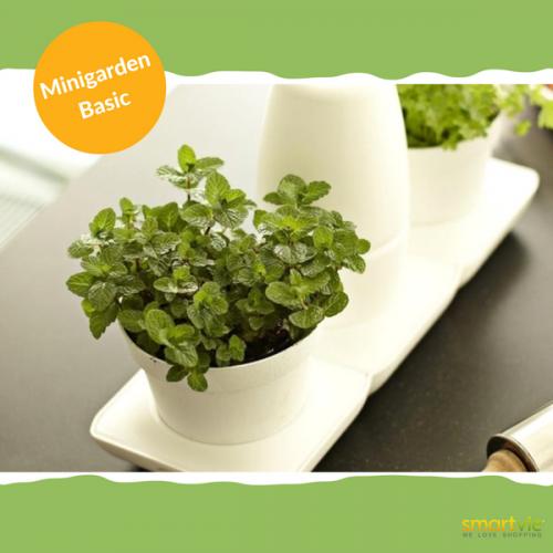 Minigartensystem für Urban Gardening