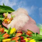 am-artmoda-lammfell-pantoffeln-lina-fellpuschen-in-rosa-1989208-1.jpg