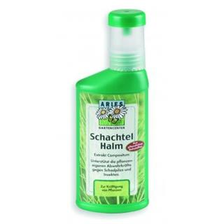 ackerschachtelhalm-5768292-1.jpg