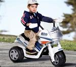 peg-perego-motorrad-raider-police-polizei-1582521-1.jpg